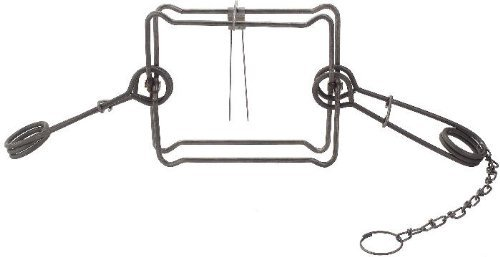 12-Dozen-6-PAK-Duke-220-Double-Spring-Body-Trap-for-Fisher-Groundhog-and-Raccoon-0