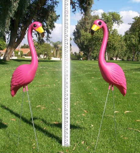 24-Pink-Flamingos-and-a-Youve-Been-Flocked-Flamingo-Yard-Sign-0-1