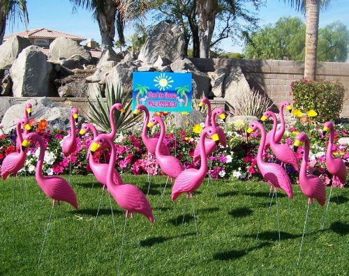 24-Pink-Flamingos-and-a-Youve-Been-Flocked-Flamingo-Yard-Sign-0
