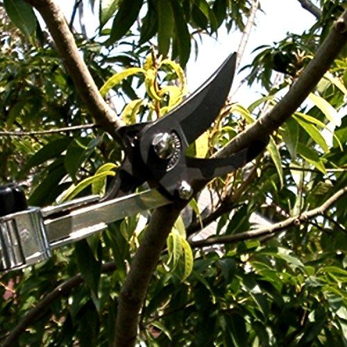 ARS-LA-180ZR305-Telescoping-Long-Reach-Pruner-0