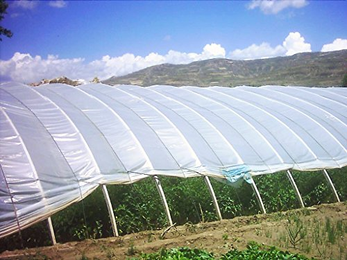 Agfabric-12ft-x-25ftGreenhouse-Clear-Plastic-Film-Polyethylene-CoveringDIY-Gardening-Film55mil-0