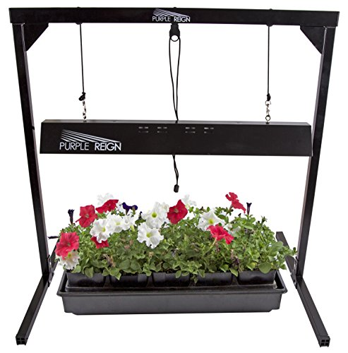 Apollo-Horticulture-Purple-Reign-2-Foot-24W-6400K-T5-Grow-Light-System-for-Plan-Growing-Choose-Your-Bulbs-0-0