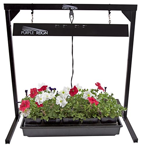 Apollo-Horticulture-Purple-Reign-2-Foot-24W-6400K-T5-Grow-Light-System-for-Plan-Growing-Choose-Your-Bulbs-0