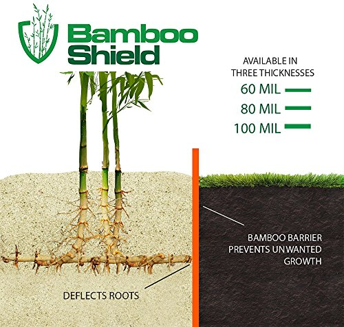 Bamboo-Shield-25-foot-long-x-24-inch-x-60-mil-bamboo-root-barrierwater-barrier-0-0