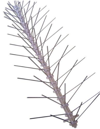 Bird-X-Stainless-Steel-Bird-Spikes-Covers-100-feet-0