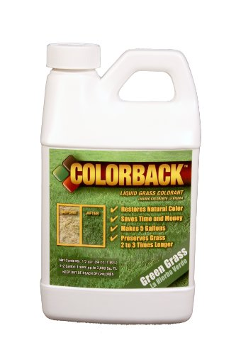 COLORBACK-2400-Sq-Ft-Mulch-Color-Concentrate-12-Gallon-Green-Grass-0