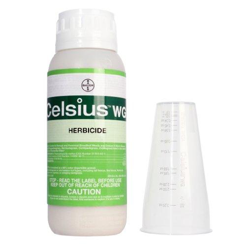 Celsius-WG-10-oz-0