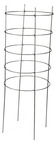 Dasco-Pro-TC-4-The-Big-EZ-Heavy-Duty-Folding-Tomato-Cage-and-Plant-Support-2-Pack-White-0-0