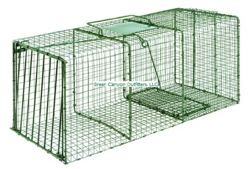 Duke-Traps-Heavy-Duty-X-Large-Cage-Trap-0