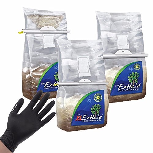 EXHALE-THE-ORIGINAL-HOMEGROWN-CO2-365-SELF-ACTIVATED-XL-BAG-for-GROW-ROOM-TENT-THCity-GLOVES-0