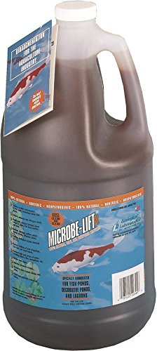 Eco-Labs-10PLG4-Microbe-Lift-PL-Bacteria-for-Watergardens-Gallon-0