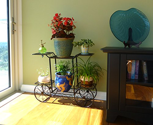 Elegant-European-Style-Cart-Design-6-Tier-Black-Metal-Planter-Flower-Pot-Holder-Display-Rack-Stand-0