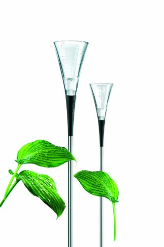 Eva-Solo-Glass-Rain-Gauge-with-Steel-Rod-0-0