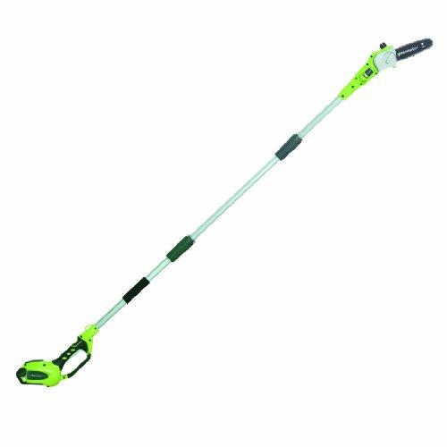 GreenWorks-G-MAX-Cordless-Polesaw-0
