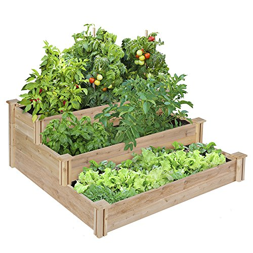 Greenes-4-Ft-X-4-Ft-X-21-In-Tiered-Cedar-Raised-Garden-Bed-0
