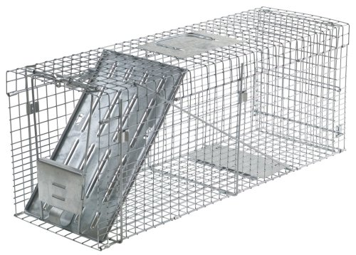 Havahart-1089-Collapsible-One-Door-Live-Animal-Cage-Trap-for-Raccoon-Stray-Cat-Groundhog-Opossum-and-Armadillos-0