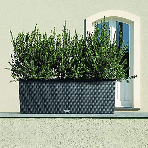 Lechuza-Trio-Cottage-30-Planter-0