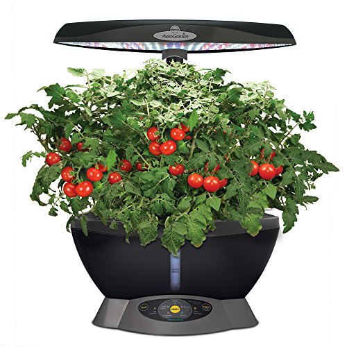 Miracle-Gro-AeroGarden-Classic-6-with-Gourmet-Herb-Seed-Pod-Kit-0-1