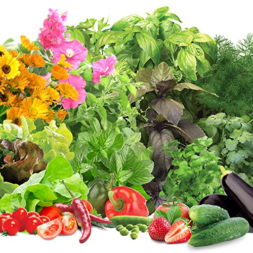 Miracle-Gro-AeroGarden-Deluxe-Grow-Anything-Kit-3-Season-0-0