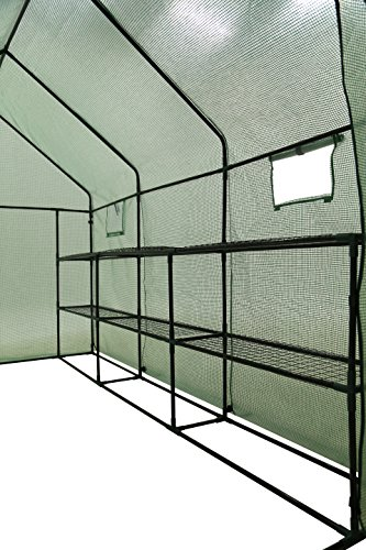 Ogrow-2-Tier-12-Shelf-Portable-Garden-Walk-in-Greenhouse-117-x-67-x-83-Dark-Green-0-0