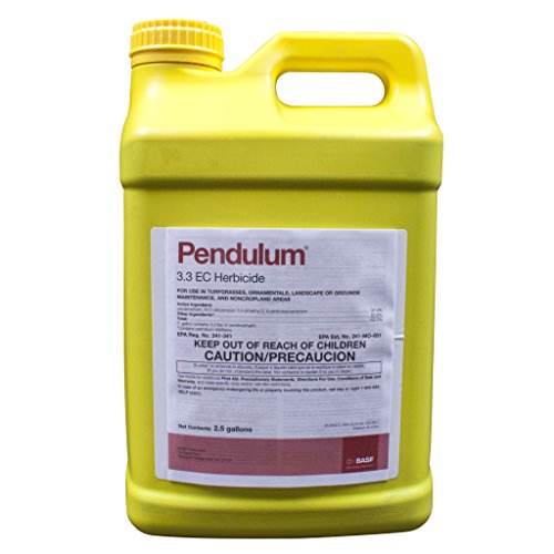 Pendulum-33-EC-25-Gallons-0