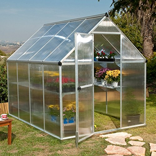 Poly-Tex-Nature-6-x-6-Foot-Greenhouse-Silver-Frame-Twin-Wall-Greenhouse-0-1