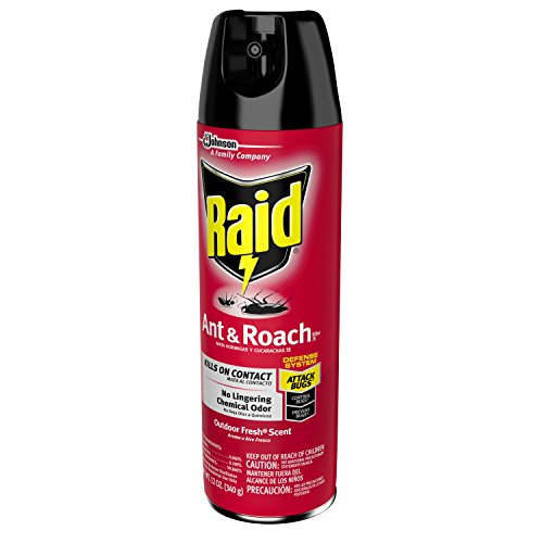 Raid-Ant-Roach-Killer-Outdoor-Fresh-0-0