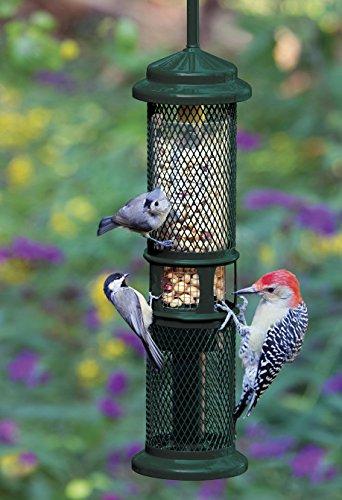 Squirrel-Buster-Peanut-Plus-Wild-Bird-Feeder-0