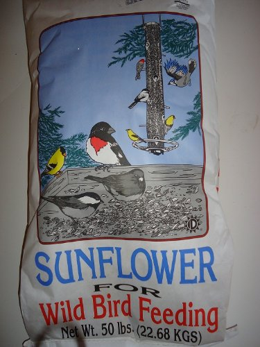 Sunflower-Seeds-Shelled-Bird-Seed-Free-Shipping-0-1