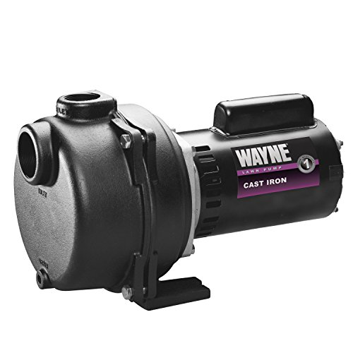 Wayne-Cast-Iron-Lawn-Sprinkling-Pump-0