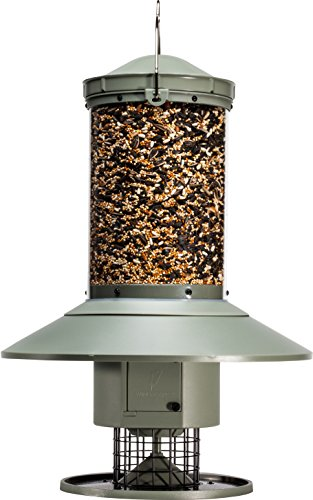 Wingscapes-AutoFeeder-Automatic-Bird-Feeder-0