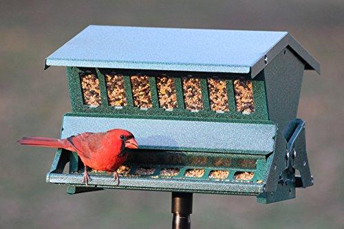 Woodlink-Absolute-II-Squirrel-Resistant-Bird-Feeder-Model-7536-0-0