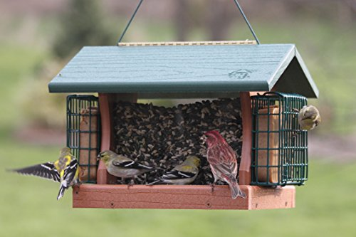 Woodlink-Going-Green-Large-Premier-Bird-Feeder-With-Suet-Cages-Model-GGPRO2-0-0
