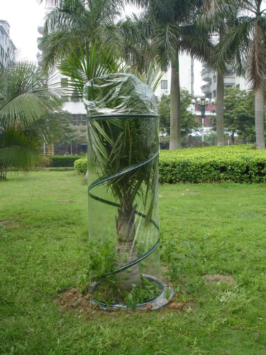 Zenport-SH3240E-Portable-Pop-Up-Greenhouse-for-Small-PlantsShrubs-6-Feet-High-0
