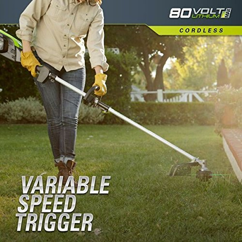 Greenworks-Cordless-String-Trimmer-Battery-and-Charger-Included-0-0