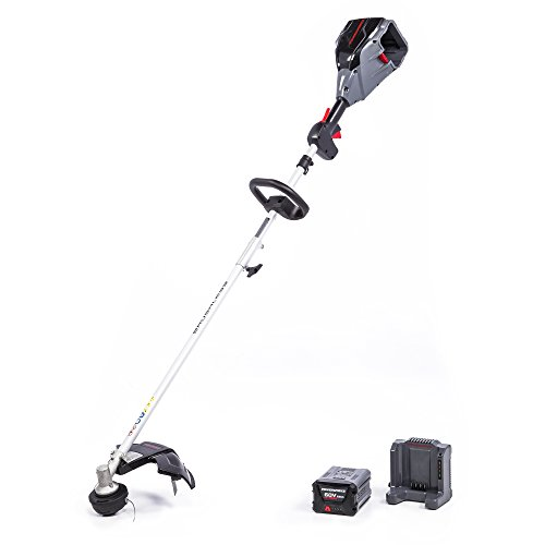 POWERWORKS-ST60L01PW-string-trimmer-0-0