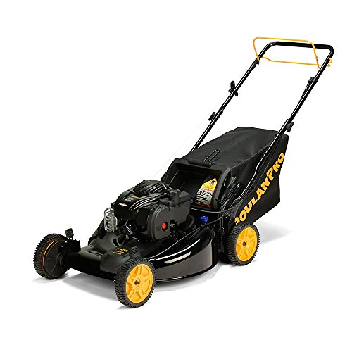 Poulan-Pro-961420140-PR550Y22RP-Briggs-550E-Side-DischargeMulchBag-3-in-1-Lawnmower-with-22-Inch-Deck-0-0