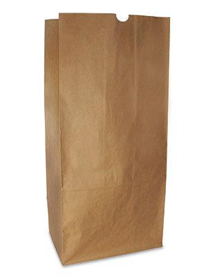 16-x-12-x-35-50-lb-Unprinted-Biodegradable-Lawn-and-Leaf-Kraft-Paper-Bags-2-ply-50-Bags-AB-175-11-02-0