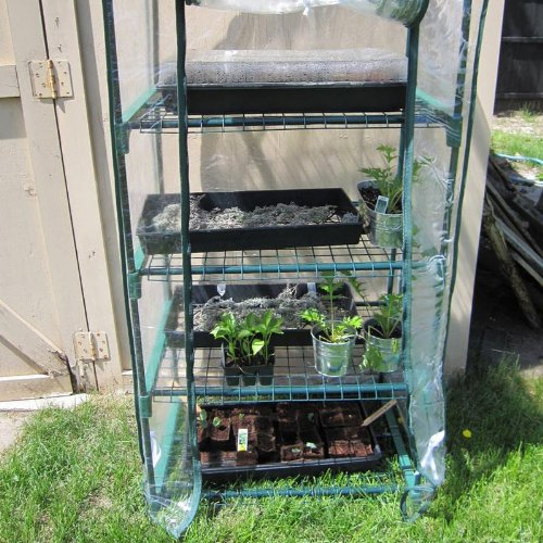 4-Season-4-Tier-Mini-Greenhouse-0-0