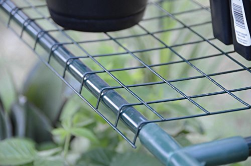 49-Outdoor-Spring-Bloom-Heavy-Duty-Four-Tier-Greenhouse-0-1