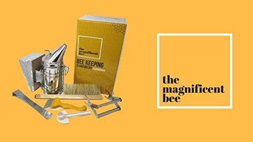 6-Piece-Beekeeping-Supplies-Starters-Kit-Bee-Hive-Smoker-Uncapping-Fork-Tool-Bee-Brush-Frame-Grip-Extracting-Scraper-Bee-Feeder-Tool-0-0