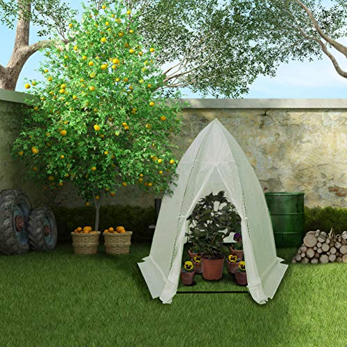 Abba-Patio-Small-Greenhouse-0-0