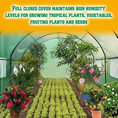 BenefitUSA-Hot-Green-House-12X7X7-Larger-Walk-in-Outdoor-Plant-Gardening-Greenhouse-Plant-Protector-0-2