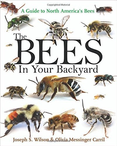 Blythewood-Bee-Company-The-Bees-in-Your-Backyard-0