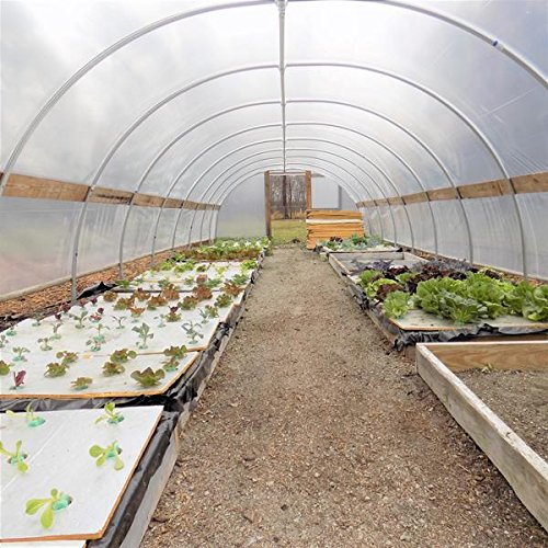 Bootstrap-Farmer-Greenhouse-Plastic-4-Year-6-mil-UV-Resistant-Clear-Polyethylene-Film-by-0-0