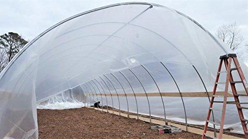 Bootstrap-Farmer-Greenhouse-Plastic-4-Year-6-mil-UV-Resistant-Clear-Polyethylene-Film-by-0-1