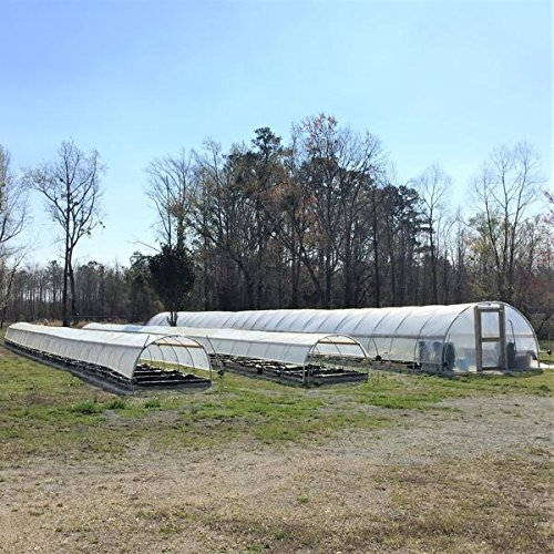 Bootstrap-Farmer-Greenhouse-Plastic-4-Year-6-mil-UV-Resistant-Clear-Polyethylene-Film-by-0-2