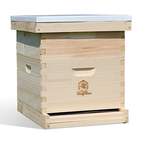 Busy-Bees-n-More-Starter-Bee-Hive-Complete-for-Honey-with-Frames-Foundations-10-Frame-LBH10-1D1M-0