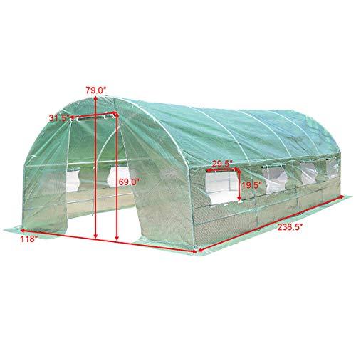 Caraya-Walk-in-Greenhouse-Backyard-Grow-Tents-Steel-Frame-8-Windows-10X65X20-0-1