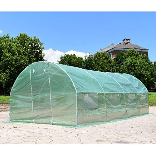 Caraya-Walk-in-Greenhouse-Backyard-Grow-Tents-Steel-Frame-8-Windows-10X65X20-0-2